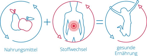 Florian Hoffmann Heilpraktiker Gesund Aktiv Stoffwechselprogramm